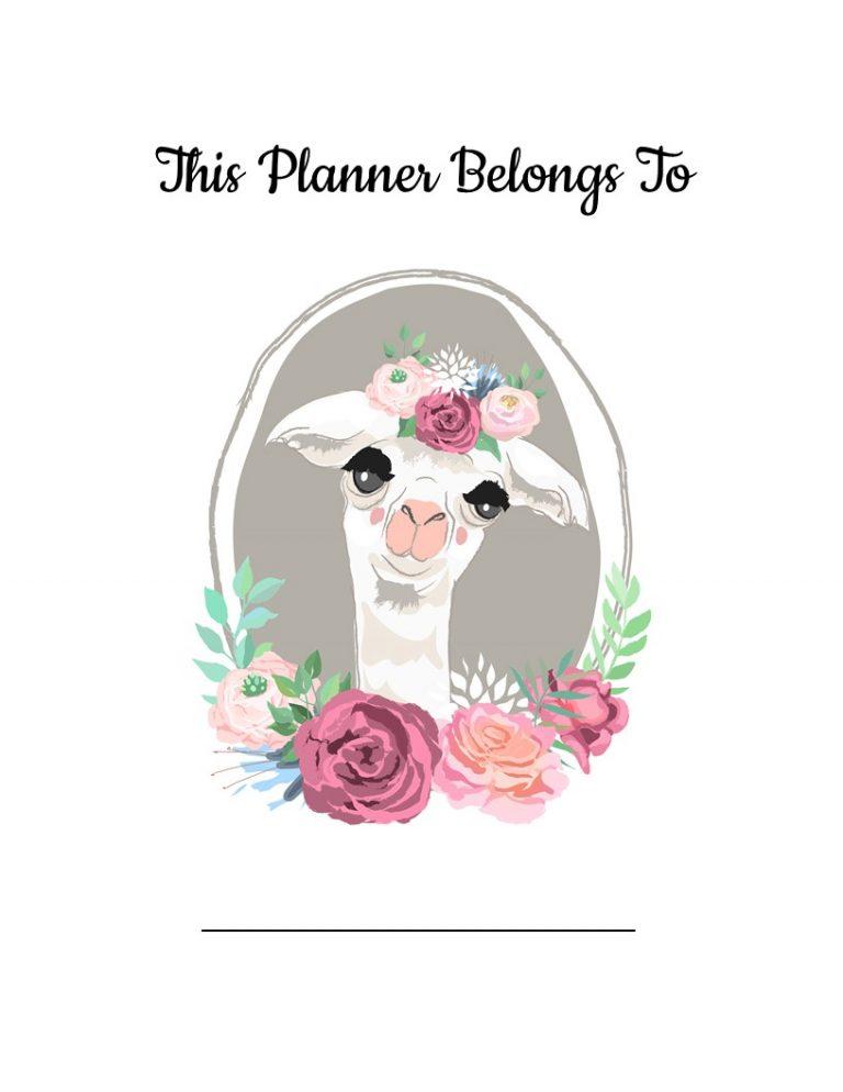 This Planner Belongs To